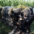 Verkehrsunfall_B7020.jpg