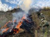 Übung - Waldbrandbekämpfung mit Realfeuer